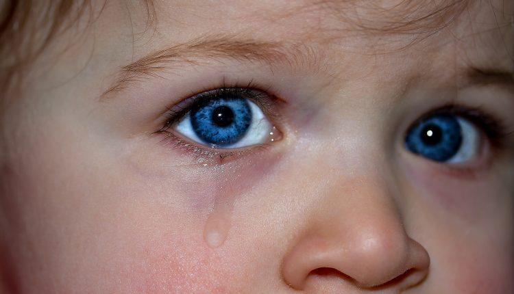 Barnehageforskning og utdanning på ville veier?