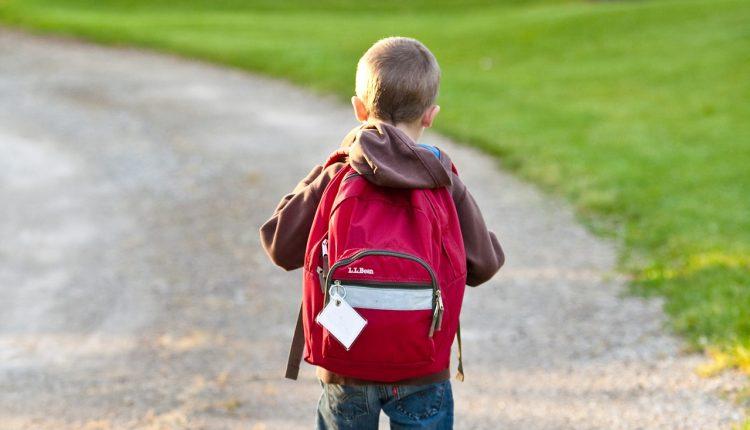 Blir man smartere av å gå på skolen?
